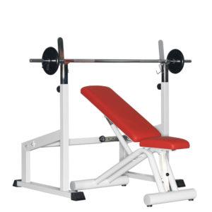 Dynamed Trainingsstation, Stolzenberg GmbH, Medizinische Trainingsgeräte,